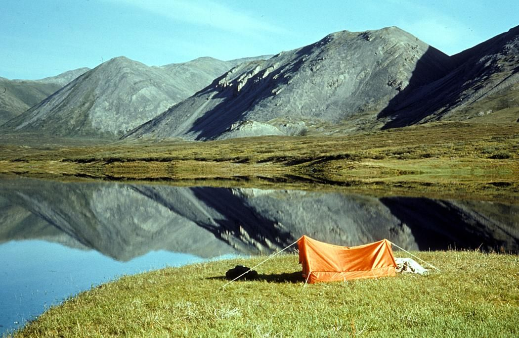Camping Helps Restore Your Natural Circadian Rhythm