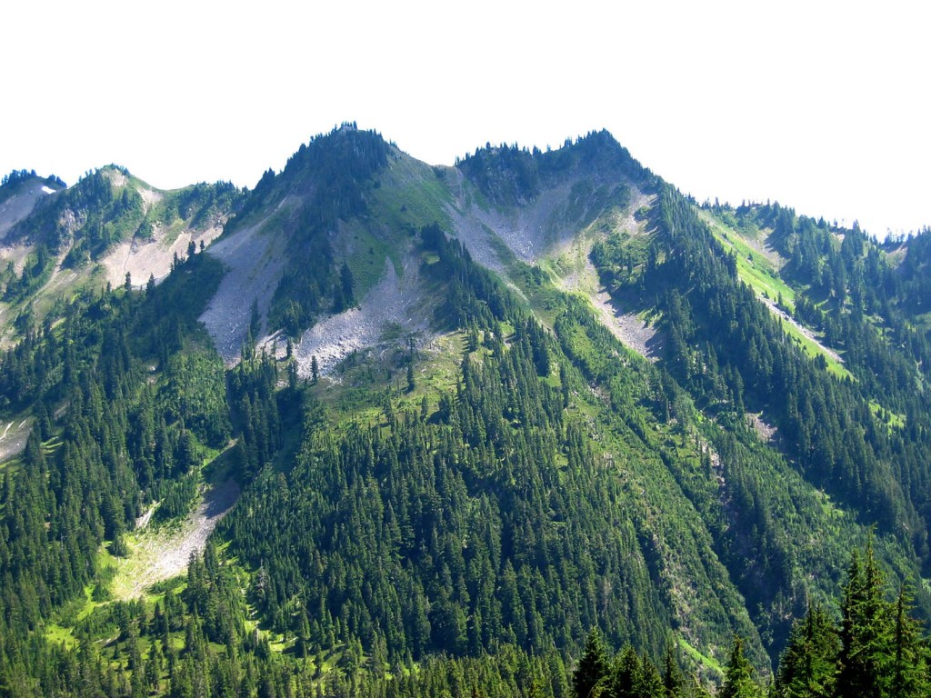 Olympic_National_Park